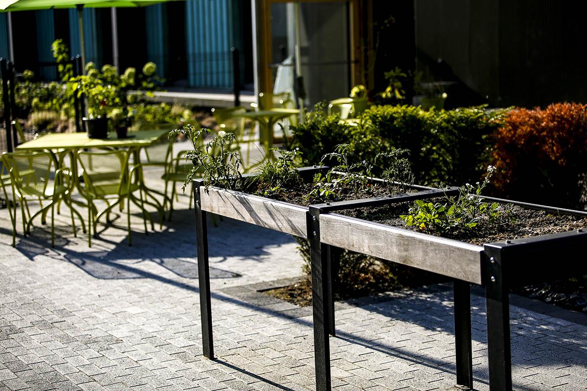 Aménagement de jardins thérapeuthiques d'une résidence EHPAD à Bouchain - Candéliance