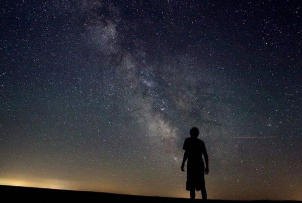 Mieux éclairer la nuit pour mieux préserver l'environnement
