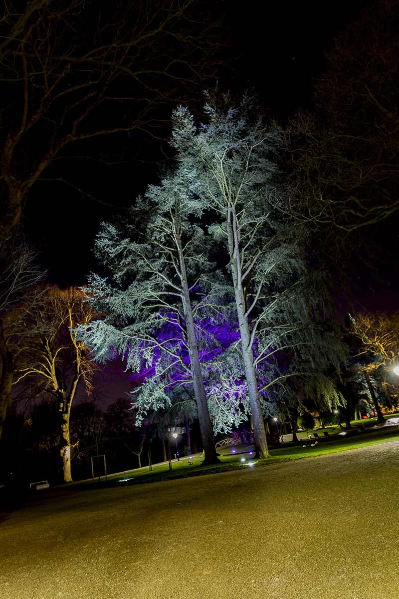Mise en lumière par éclairage LED du Parc Public Elie Gryuelle de Henin Beaumont par LEC - Candéliance